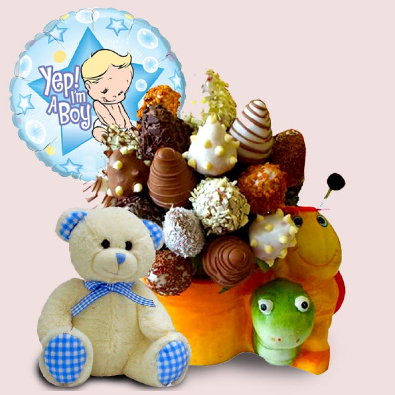 Baby Boy Gift Package