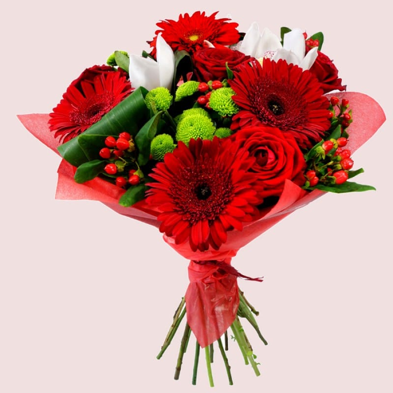 Stunning Red Flowers